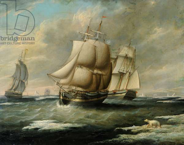 The Liverpool Whaleship, 'Baffin', 1834 (oil on canvas)