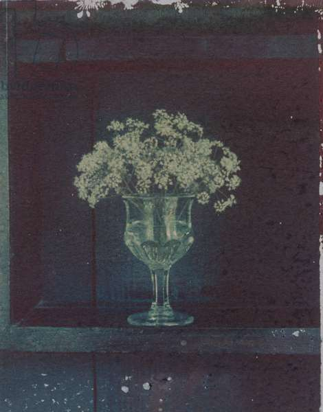 Flowers in Vase on Shelf