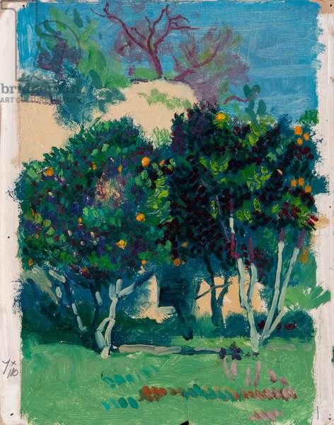 Orange Trees, (oil on paper)