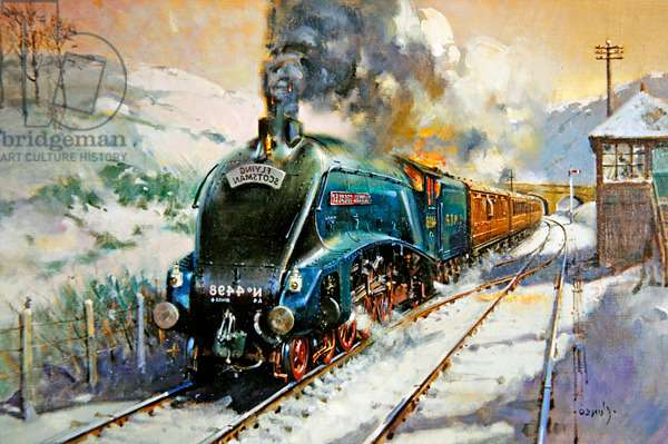 Flying Scotsman, (acrylic on canvas)