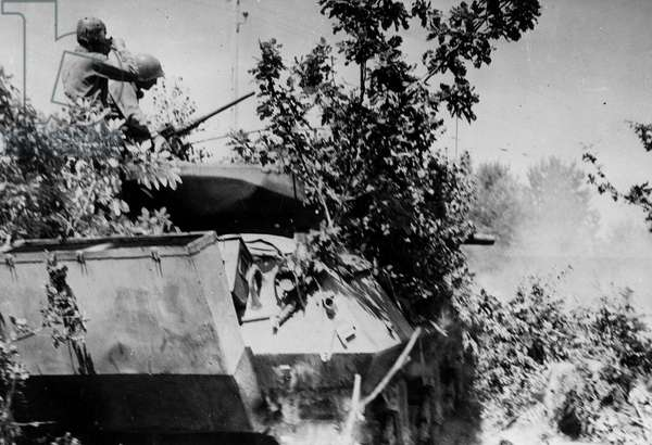 Second World War (1939-1945) - Operation Cobra (July 1944) (WWII - Operation Cobra in Normandy (July 1944): A tank destroyer M10 camouflages the 2nd DB US opens fire on enemy troops - Photography taken in Barenton (Channel), August 9, 1944