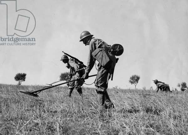 Second World War (1939-1945) - World War II (WWII or WW2): Tunisia (North Africa) 1943: Soldiers of the Genie of the African Armee collaborating with the 5th US Army demolished field during the Tunisian Campaign