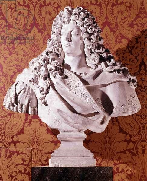 Bust of Louis XIV. Chateau de Chambord.