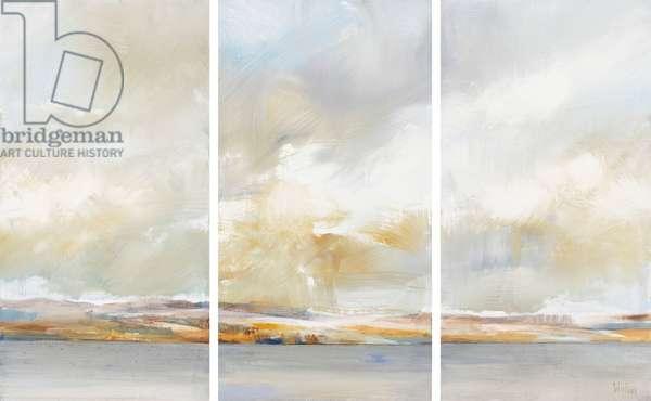 April Sky, Argyll (triptych)
