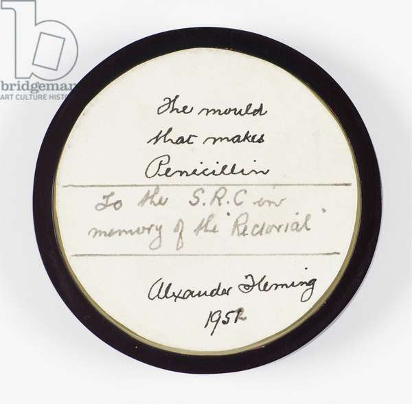 Penicillin mould, presented to the Student Representative Council by Sir Alexander Fleming when elected Rector, 1952 (photo)