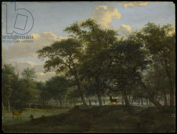 Wooded Park Landscape with Deer, c.1690-1700 (oil on panel)