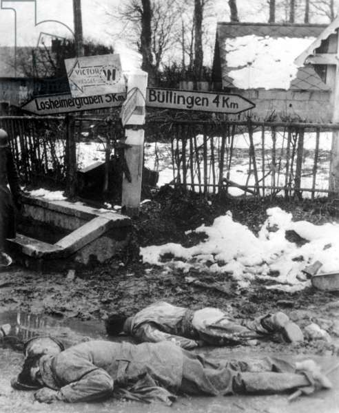 American soldiers, stripped of equipment, lie dead, face down in Belgium. The soldier in the foreground has bare feet, his shoes and socks taken by less well supplied German soldiers. Dec. 12-31, 1944. Battle of the Bulge. World War 2