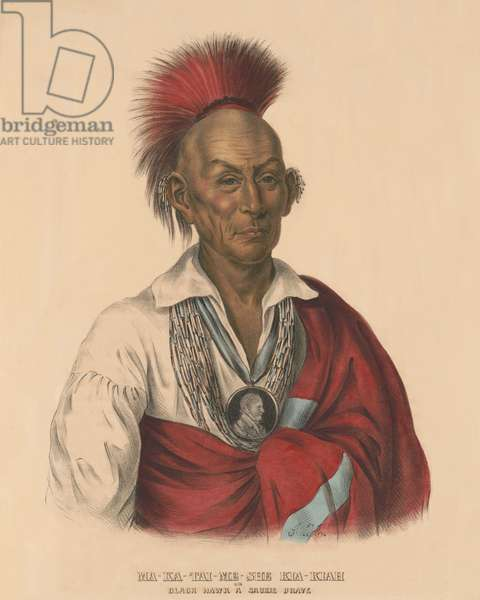 Black Hawk, Sauk Chief, c. 1838, after the Black Hawk War of 1832. He is depicted with a blanket draped over his left shoulder, with beaded earrings and wearing a portrait medallion around his neck. Painting by Alfred M. Hoffy. (lithograph)