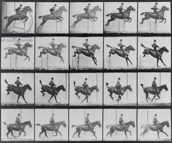 Consecutive images of man riding a horse. From Eadweard Muybridge's, ANIMAL LOCOMOTION, 1887