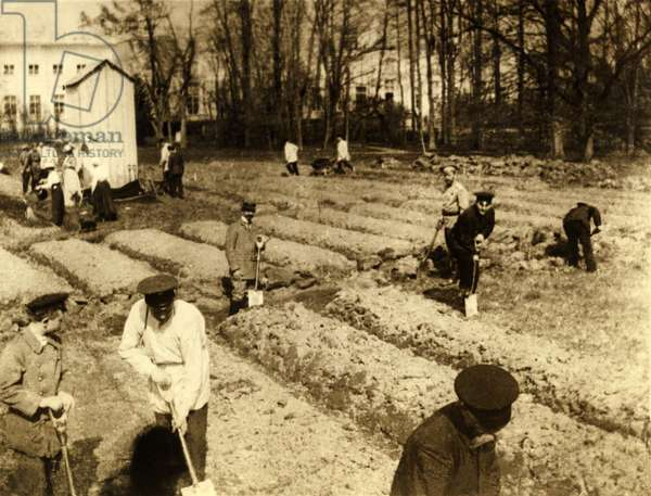 Imprisoned Russian Czar Nicholas II and family gardening at Tsarskoe-Selo. 1917