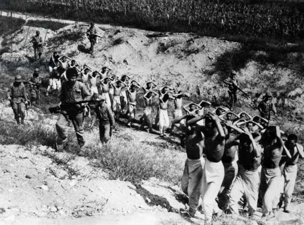 North Korean prisoners being led to a prison camp in South Korea, 1953.