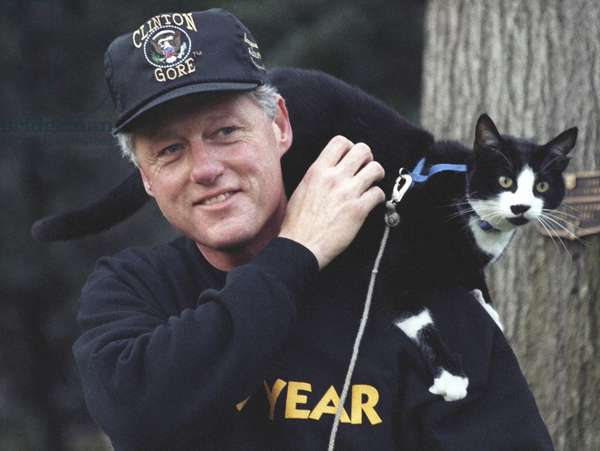 President Bill Clinton with Socks the Cat perched on his shoulder. March 7, 1995