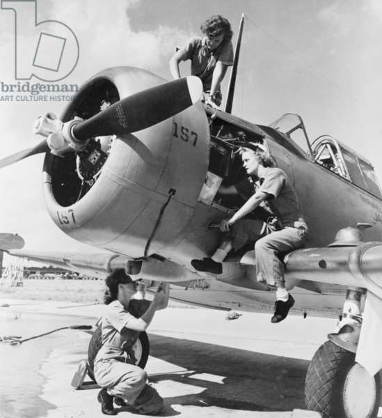 Navy WAVE aviation machinist's mates, working on an North American Aviation SNJ training plane. Jacksonville Naval Air Station, 1944. World War 2