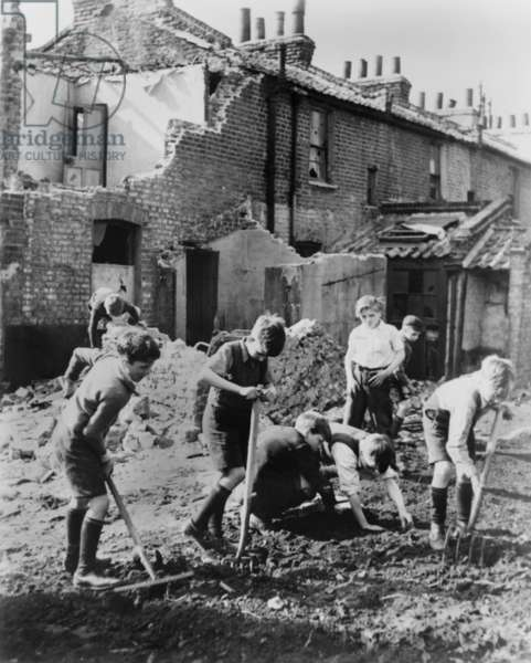 World War 2, Battle of Britain. Young boys with pitchforks and rakes start a garden next to buildings damaged by air raids. Between 1940-1945