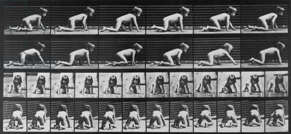 Consecutive images of a nude girl crawling. From Eadweard Muybridge's, ANIMAL LOCOMOTION, 1887