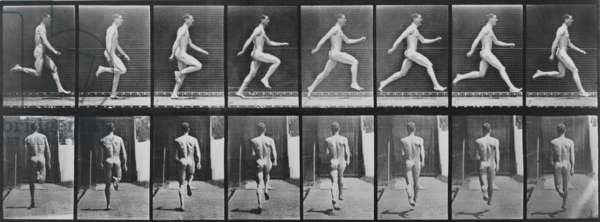 Consecutive images of a nude man running. From Eadweard Muybridge's, ANIMAL LOCOMOTION, 1887