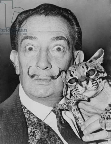 Salvador Dali (1904-1989), eccentric Spanish Surrealist painter with his pet ocelot, a wild cat native to South and Central America, at the St. Regis Hotel in 1965. tral America, at the St. Regis Hotel in 1965. tral America, at the St. Regis Hotel in 1965. tral America, at the St. Regis Hotel in 1965