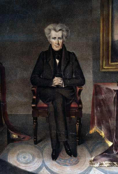 Andrew Jackson, President of the United States / from the original painting by W.J. Hubard ; drawn on stone by A. Newsam. 1830