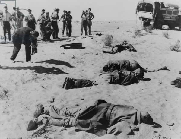 Bodies of dead Egyptian soldiers lying in the Sinai desert following Israeli advance. Photographers take pictures of the casualties of the Suez Crisis, in which Britain, France and Israel attacked Egypt that followed dispute over the Suez Canal. Oct. 29-Nov. 7, 1956.