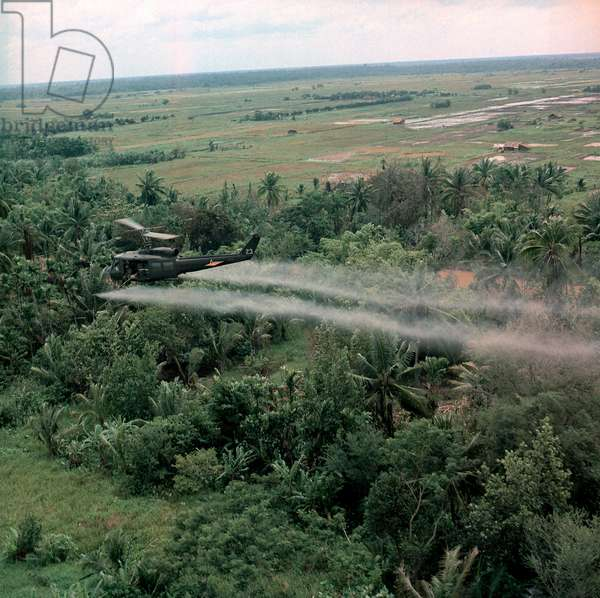 Vietnam War, Defoliation Mission, a UH-1D helicopter from the 336th Aviation Company sprays a agent orange on a dense jungle area in the Mekong delta, c.late 1960s