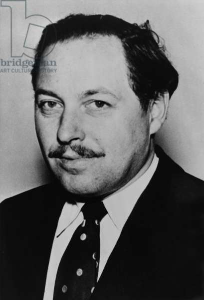 Tennessee Williams (1911-1983) American playwright won Pulitzer Prizes for A STREETCAR NAMED DESIRE (1947) and CAT ON A HOT TIN ROOF (1955). Other works were made into films: THE NIGHT OF THE IGUANA, SUDDENLY LAST SUMMER, SWEET BIRD OF YOUTH, and THE ROMAN SPRING OF MRS. STONE