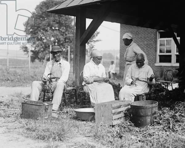 Elderly African Americans who were once slaves work together in a rural setting in 1920
