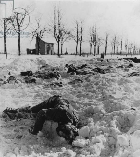 Bodies of U.S. soldiers slain by the Nazis after their surrender near Malmedy, Belgium. On Dec. 17, 1944 soldiers under the command of Joachim Peiper and SS general Sepp Dietrich killed 84 disarmed American POWs in the Malmedy Massacre. Battle of the Bulge. World War 2