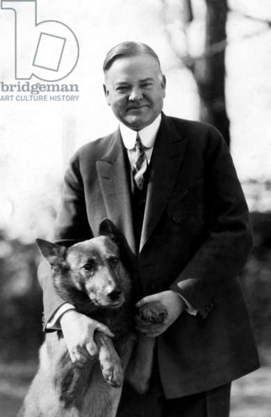 President Herbert Hoover and his dog, Tut, ca 1920's.