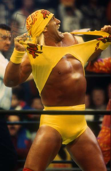 Hulk Hogan, 1995 (photo)