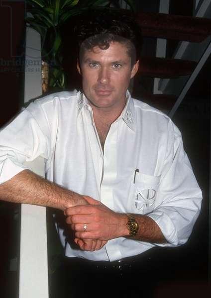 David Hasselhoff, 1991 (photo)