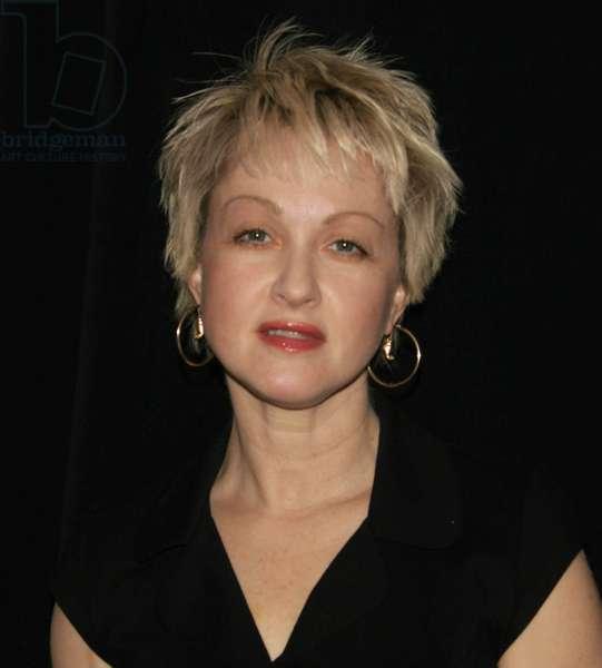 Cyndi Lauper, 2006 (photo)