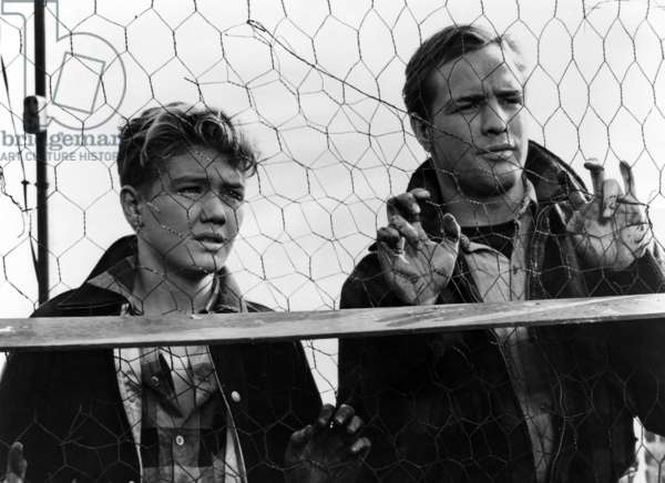 ON THE WATERFRONT, Arthur Keegan, Marlon Brando, 1954.