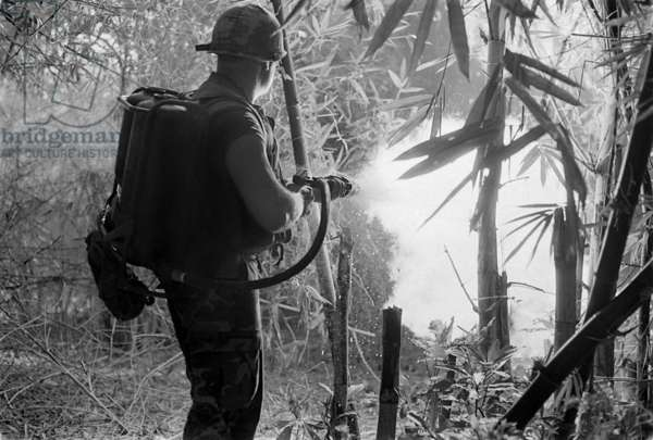 Guerre Du Vietnam: Vietnam War. US Soldier clears a jungle area with his flame thrower. May 22, 1970.