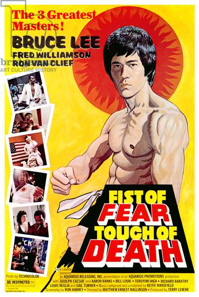 FIST OF FEAR, TOUCH OF DEATH, Fred Williamson, Aaron Banks, Bruce Lee, 1980