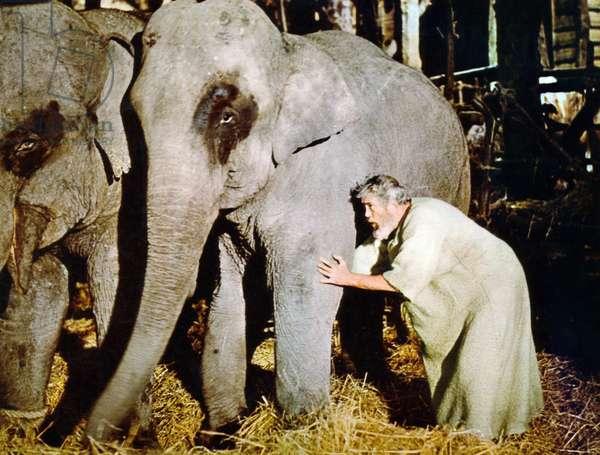 THE BIBLE, John Huston, 1966, TM & Copyright © 20th Century Fox Film Corp./courtesy Everett Collection