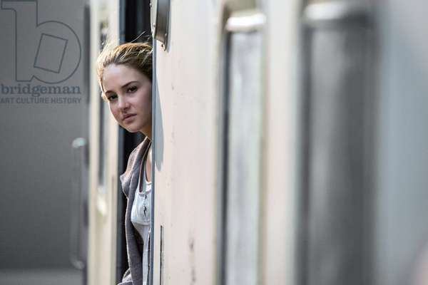 Divergente: DIVERGENT, Shailene Woodley, 2014. ph: Jaap Buitendijk/©Summit Entertainment/courtesy Everett Collection