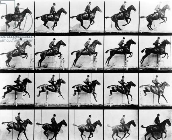 Eadweard Muybridge photographs, circa 1872. His device, called the zoopraxiscope projected a series of still pictures of running horses that suggested movement to the viewer. Thomas A. Edison saw a demonstration of the device and was inspired to develop true motion pictures.