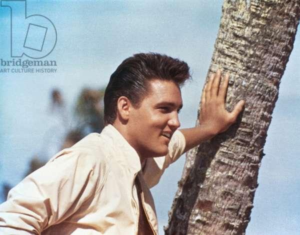 FOLLOW THAT DREAM, Elvis Presley, 1962