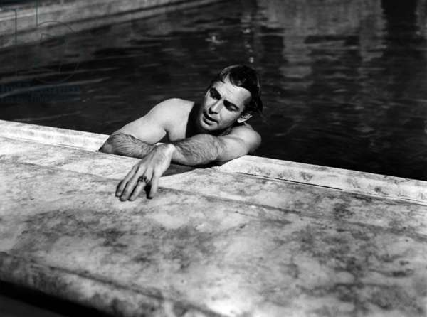 Gatsby Le Magnifique: THE GREAT GATSBY, Alan Ladd, 1949