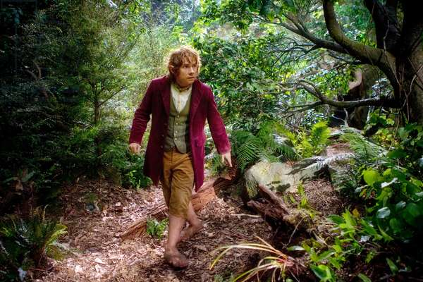 Le Hobbit: Le Voyage Inattendu: THE HOBBIT: AN UNEXPECTED JOURNEY, Martin Freeman, 2012. ph: Todd Eyre/©Warner Bros. Pictures/Courtesy Everett Collection