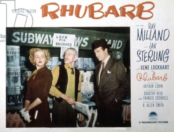 Rhubarb, le chat millionnaire