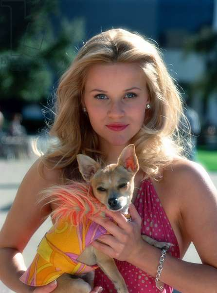 La revanche d'une blonde: LEGALLY BLONDE, Reese Witherspoon, Bruiser, 2001.