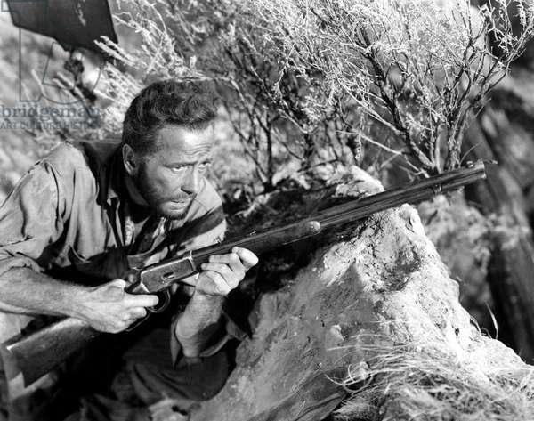 The Treasure of the Sierra Madre, Humphrey Bogart, 1948