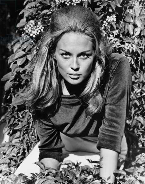 THE HAPPENING, Faye Dunaway, 1967