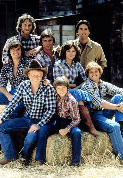 SEVEN BRIDES FOR SEVEN BROTHERS, (top, l to r): Peter Horton, Drake Hogestyn, (middle, l to r): Roger Wilson, Richard Dean Anderson, Terri Treas, (bottom, l to r): Bryan Utman, River Phoenix, Tim Topper, 1982-83, © CBS/Courtesy: Everett Collection