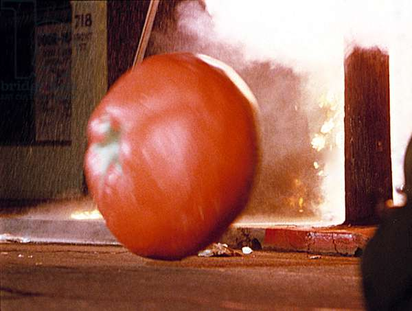 ATTACK OF THE KILLER TOMATOES, 1978