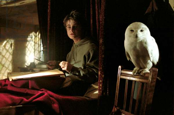 HARRY POTTER AND THE PRISONER OF AZKABAN, Daniel Radcliffe (with 'Hedwig' the owl), 2004, © Warner Brothers/courtesy Everett Collection