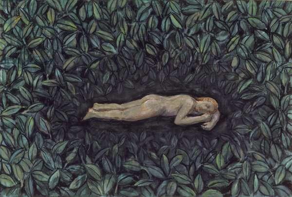 Secret Place 1, 2009 (oil on canvas)