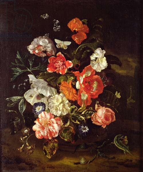 Still Life of Flowers in a Vase, 1713 (oil on canvas)