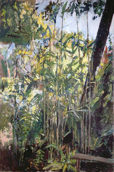 Bamboo (oil on canvas)